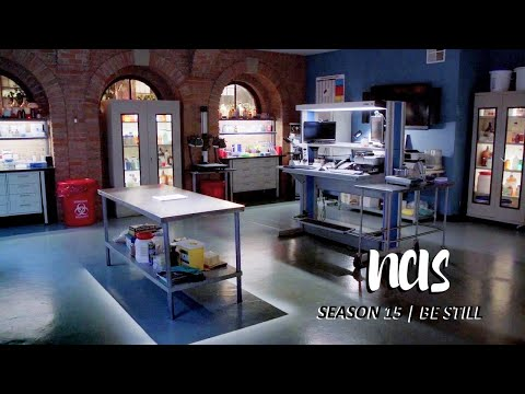 Category:New Orleans Characters | NCIS: New Orleans Wiki