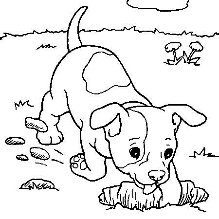 454 best Kids images on Pinterest | Print coloring pages