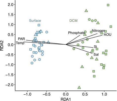 Frontiers   Phytoplankton Community Structure Is Driven by