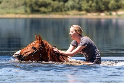 Western Ranch, France | Horse Riding Holidays