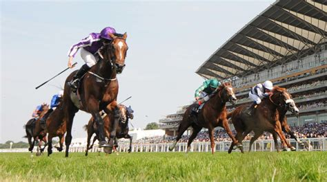 Ascot Racecourse: Today's Results & Betting