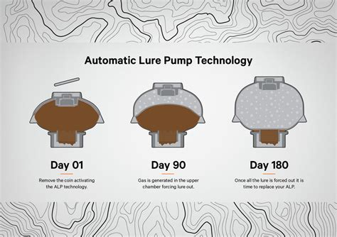 A24 & Automatic Lure Pump — The Designers Institute of New